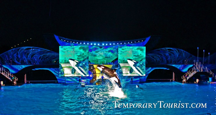 Shamu's Celebration: Light up the Night