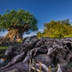 Animal Kingdom Tree of Life Refurbishment Complete as New Roots are Revealed