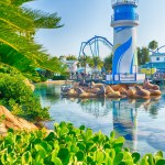 "SEAWORLD ORLANDO DEBUTS NEW PASS PROGRAM, KICKS OFF 2019 ""BEST YEAR EVER"""