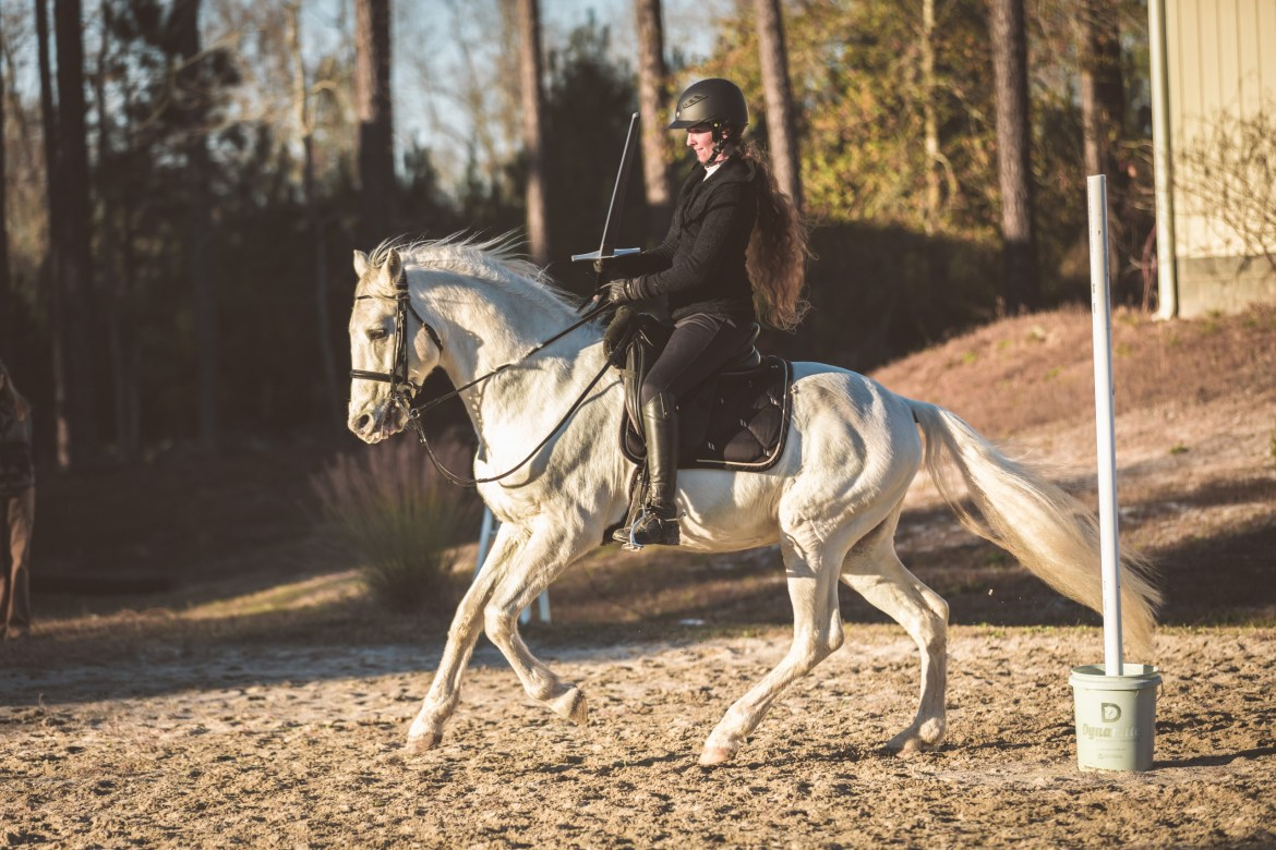 Lusitano horse cantering with rider and sword