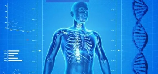 osteoporosi alimento per salute ossa