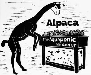 Alpaca _HHogan 2017