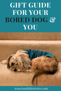 Gift Guide for Your Bored Dog and You