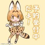 【想定外!?】けものフレンズBD付オフィシャルガイドブック (1)