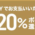 【2/17】aupay 誰でも毎週10億円