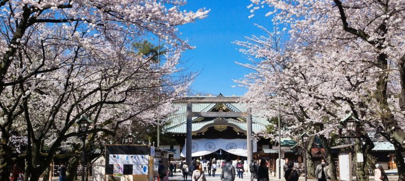 日本攻略/拾選日本10大私房欣賞櫻花景點大揭密