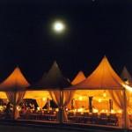 tenda perkawinan tema malam
