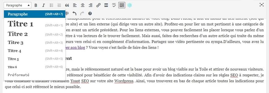LES VÉRIFICATIONSA FAIRE AVANT DE PUBLIER UN ARTICLE DE BLOG