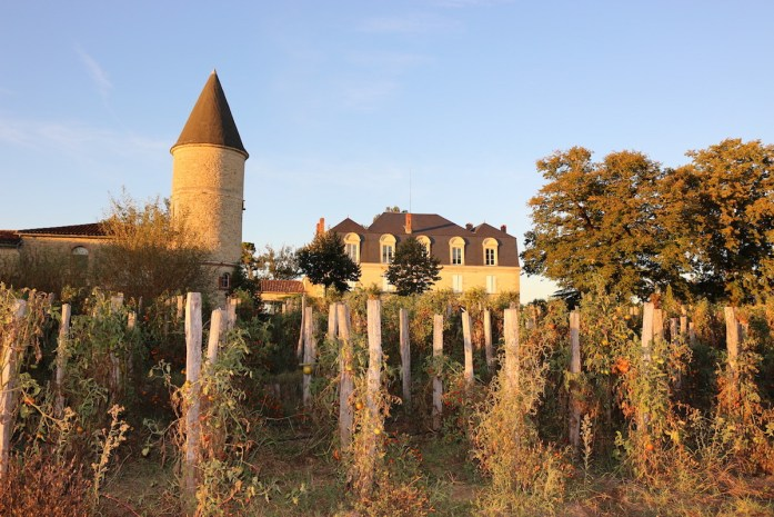 Sunset Château Guiraud