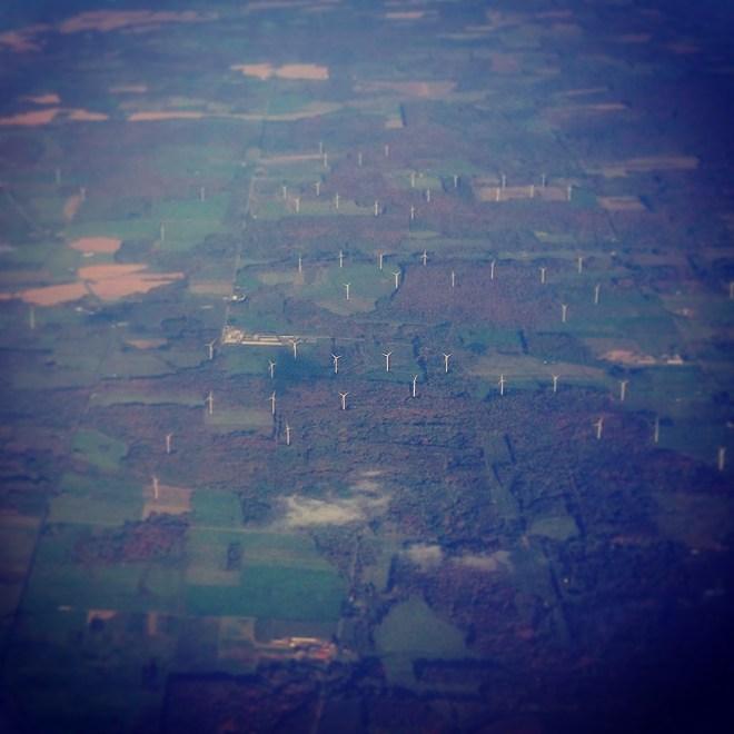 Buffalo Wind Turbines, Molly J. Jarboe