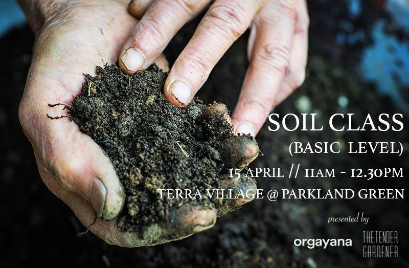 soil singapore