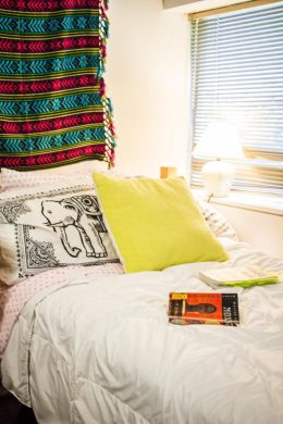 Lisa Gong - Personal Bubbles in the Orange Bubble: Princeton Students and Their Dorm Rooms (Part 2) - Raven DeRamus