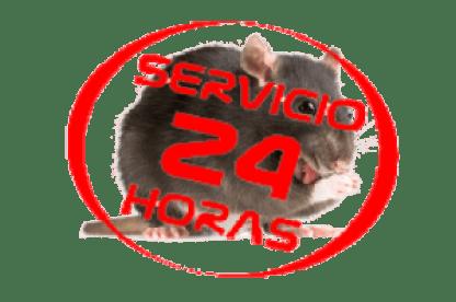 Matar rata 24 horas tenerife - Las palmas