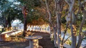 Trampa para moscas en Las palmas de Gran Canaria y tenerife