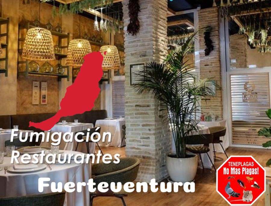 fumigar bar/restaurante en fuerteventura