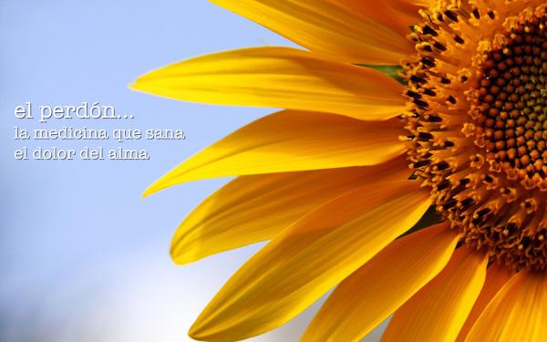 La alegría del perdón   Perdonar es sanar 5