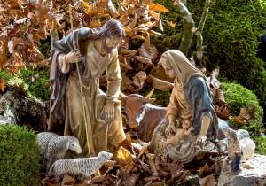 22 de diciembre: agradece a Dios por tus padres