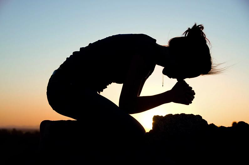 XX Domingo durante el año: ¡grande es tu fe!
