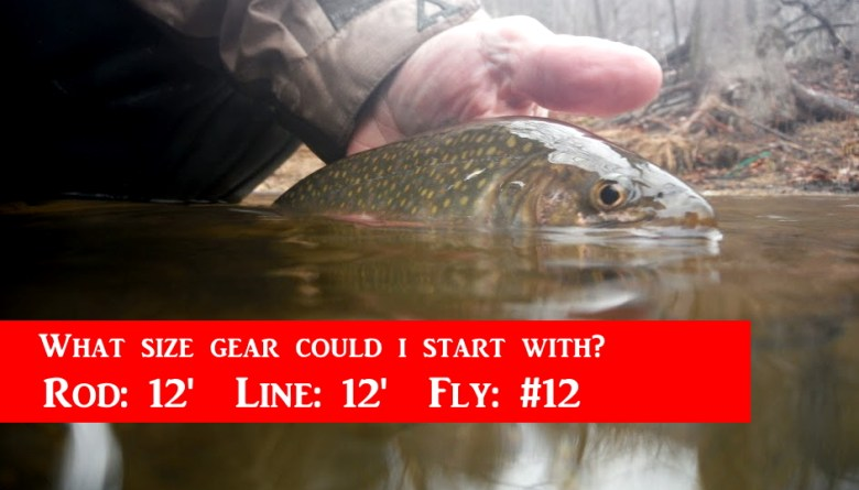 Jason Sparks Rule of 12s Tenkara Rod Line Fly