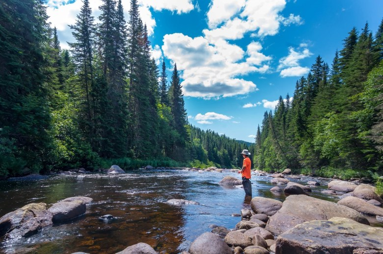 Forêt Montmorency Tenkara - Danièle Beaulieu - Student Fishing