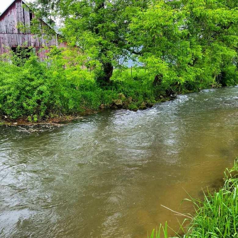Anthony Naples - Adrift in the Drifltess - stream barn