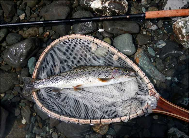 Rory Glennie - Estuarine Fixed Line Fishing - Tenkara USA