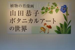 信州新町美術館 ミュゼ蔵 (8)