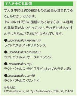 すんき (7)