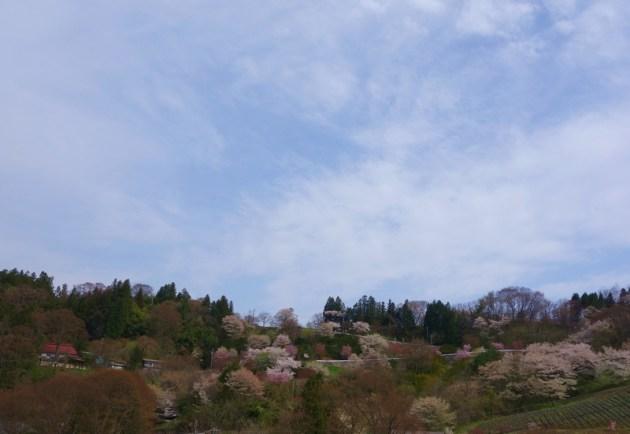 夢農場 (4)