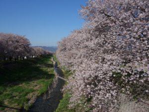 黒沢川 (72)