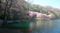 安曇野風景写真 twitter@tenmasawa (99)