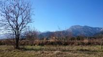 安曇野風景写真 twitter@tenmasawa (12)