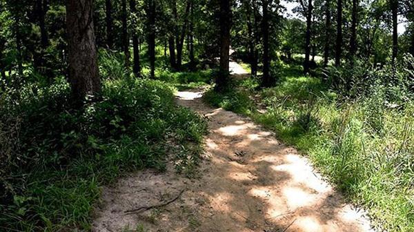 Tour de Wolf Trail