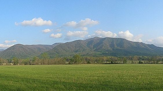 Green meadow with treeline and Smoky Mountains ridgeline in the distance