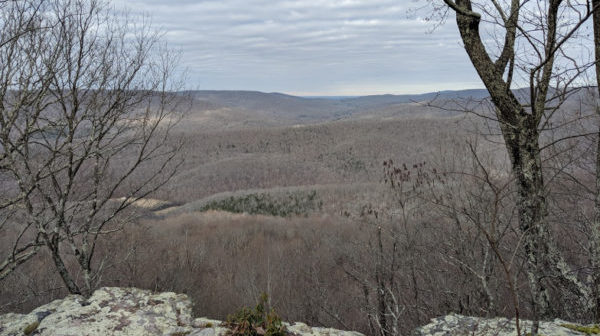 Overview of large forested area. Limestone ledge in foreground