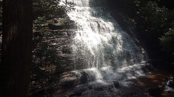 Bright water falling over rocks in dark forest