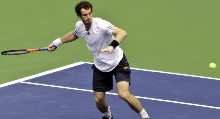 Andrew Castle Urges Andy Murray To Keep Going