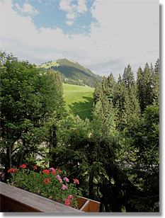 view from Chalet Heimeli in Gstaad, Switzerland