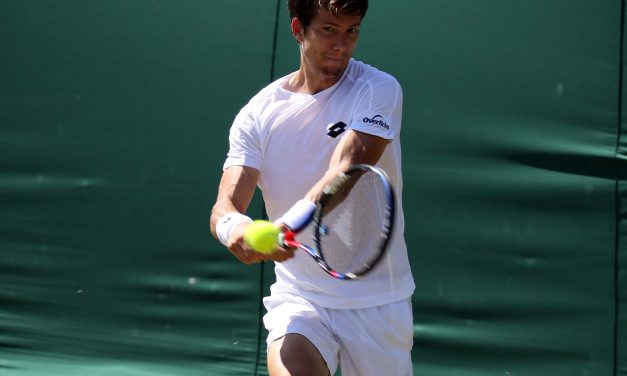 Wimbledon Day 3 | Bedene hopes his efforts will be recognised