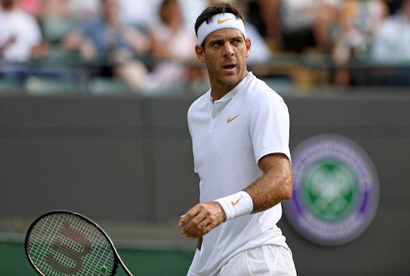 Wimbledon   Del Potro strides into third round