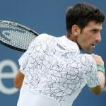 Cincinnati   Djokovic overcomes stomach bug and opponent