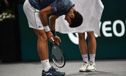 Paris   Federer and Djokovic will fight for final place