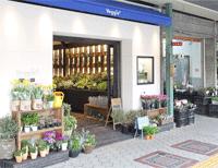 【天王寺区】オシャレなグリーンに出会えるお店「べジープラス」が3月1日にOPEN!