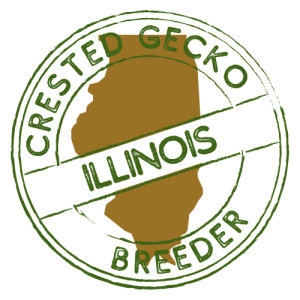 Crested Gecko Breeders in Illinois