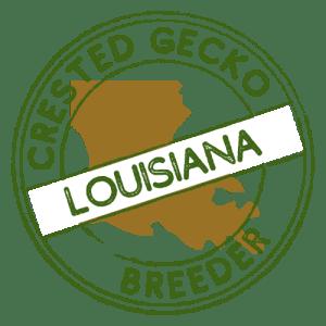 Crested Gecko Breeders in Louisiana
