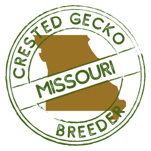 Crested Gecko Breeders in Missouri