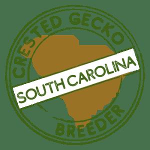 Crested Gecko Breeders in South Carolina