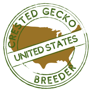 Crested Gecko Breeders in United States