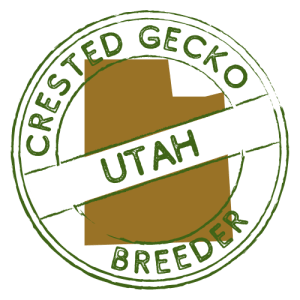 Crested Gecko Breeders in Utah