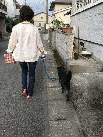 お母さんとの散歩が一番の楽しみ